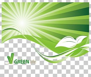 Environment Stock Photography Illustration PNG