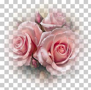 Flower Rose Pink Floral Design Diamond Mosaic PNG