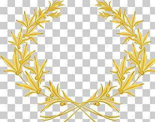 Laurel Wreath Olive Wreath Olive Branch PNG