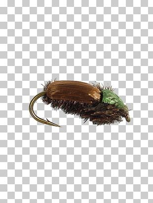 Fly Fishing Insect Artificial Fly Elk Hair Caddis PNG