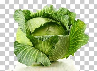Cabbage Food Vegetable Eating Health PNG