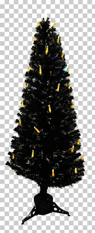 Christmas Tree Spruce Fir Christmas Ornament Christmas Day PNG