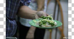 Vegetarian Cuisine Leaf Vegetable Recipe Food Vegetarianism PNG