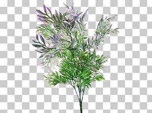 Plant Stem Artificial Flower Shrub Branch PNG