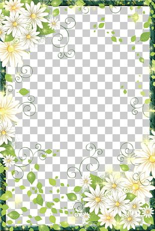 Border Flowers Frame Digital Photo Frame PNG