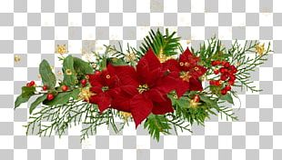 Christmas Flower Desktop Poinsettia PNG