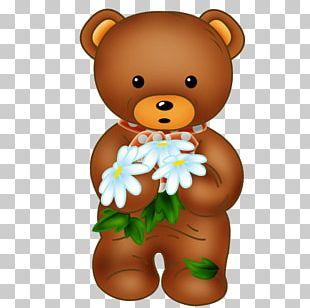 Brown Bear Giant Panda PNG