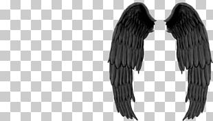 Devil Angel PNG
