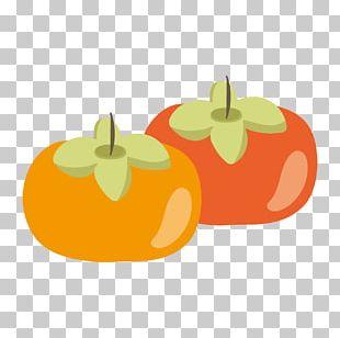 Illustration Oyster Product Design Cartoon PNG