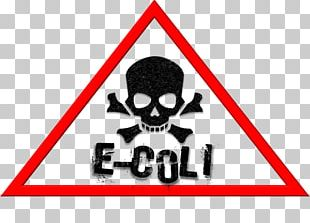 Food Poisoning Infection E. Coli Food Safety PNG