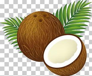 Coconut Water Coconut Milk PNG