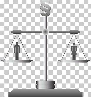 Wage Gender Pay Gap Law Gender Inequality Labor PNG