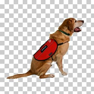 Service Dog Dog Harness Leash Emotional Support Animal PNG