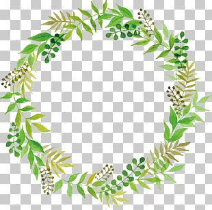 Wedding Green PNG