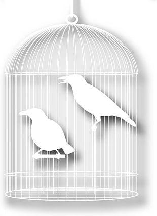 Bird Cartoon Silhouette PNG