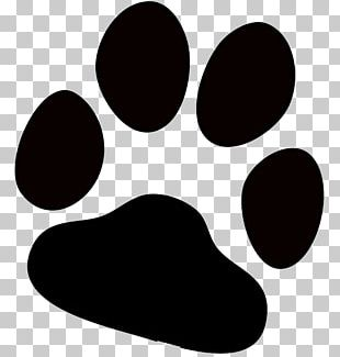 Dog Paw Printing PNG