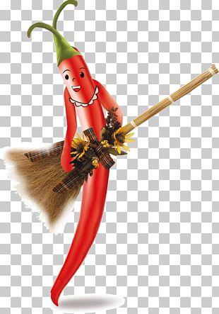 Bell Pepper Chili Pepper Black Pepper Vegetable PNG