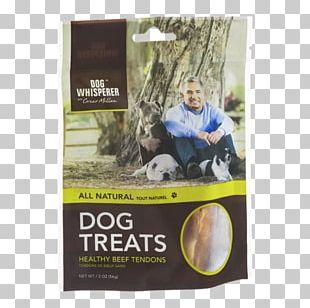 Dog Biscuit Pizzle Pet Food PNG