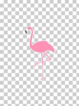 T-shirt Logo Flamingo Sticker Hoodie PNG