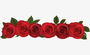 Red Rose Template PNG