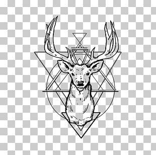 White-tailed Deer Tattoo Antler Drawing PNG
