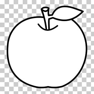 Apple Drawing Coloring Book Fruit Food PNG