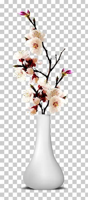Flower Vase PNG