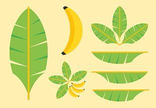 Banana Leaf PNG