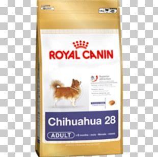 Golden Retriever Cat Food Cavalier King Charles Spaniel Maltese Dog PNG