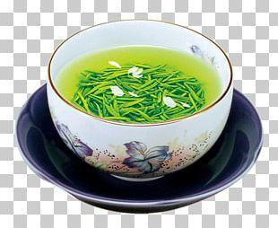 Green Tea White Tea Huangshan Maofeng Tea Culture PNG