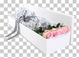 Rose Cut Flowers Flower Bouquet Pink Ribbon PNG