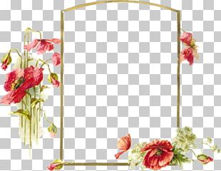 Photography Frames Film Frame PNG