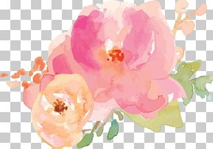 Border Flowers Watercolor Painting PNG