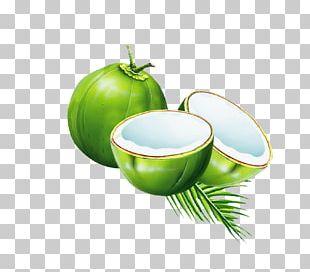 Coconut Water Juice Coconut Milk Powder PNG