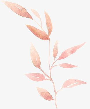Hand-painted Watercolor Leaves PNG