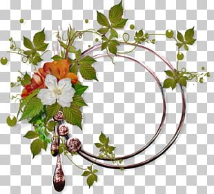 Floral Design Frames Flower Painting PNG