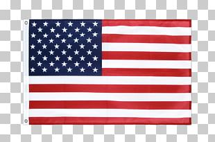 Flag Of The United States Annin & Co. Flag Of Texas PNG