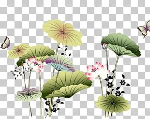 a7630d165 Lotus Painting PNG Images, Lotus Painting Clipart Free Download