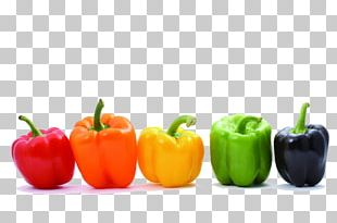 Bell Pepper Vegetable Chili Pepper Color Food PNG