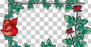 Floral Design Frames Flower Photography Petal PNG