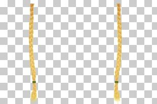 Jewellery Necklace Chain Amber PNG