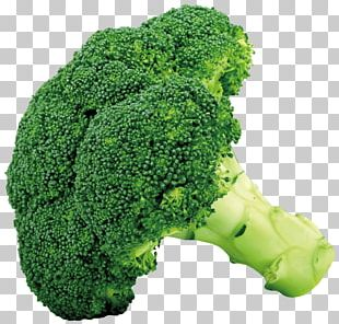 Broccoli Cruciferous Vegetables Cauliflower Cabbage PNG