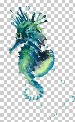 Seahorse Sea Creatures Watercolor Painting PNG