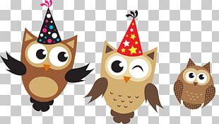 Little Owl Birthday Euclidean PNG