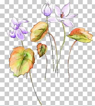 Watercolor Painting Watercolour Flowers PNG