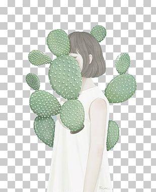 Cactaceae Succulent Plant Drawing Cactus Garden PNG