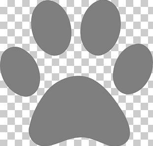Tiger Dog Cat Lion Paw PNG