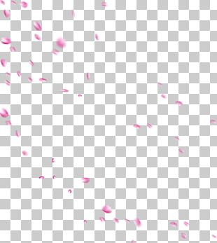 Pink Petal Rose PNG
