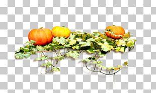 Pumpkin Food PNG