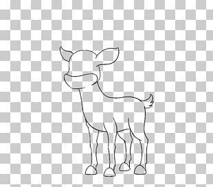 Sheep Cattle Goat Horse Deer PNG